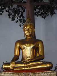 Thai Buddha image in Touching the Earth Mudra